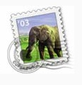 elefante icona