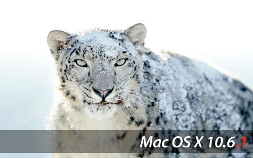 Snow-Leopard1061