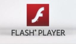 Flash Player mobile