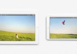 Spot iPad Mini