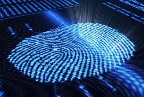 fingerprint tamarra