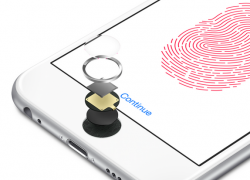 iPhone-6-Touch-ID-250x248