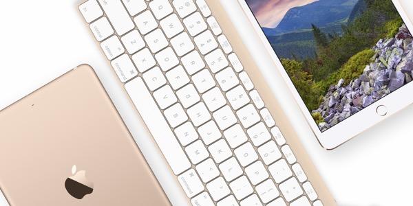 Apple Wireless Keyboard oro grigio siderale Bluetooth 4.2 LE 4