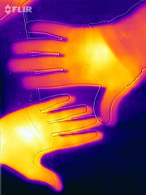 """In questa foto è chiaramente visibile la separazione tra l'immagine termica e i bordi dell'immagine """"normale""""."""